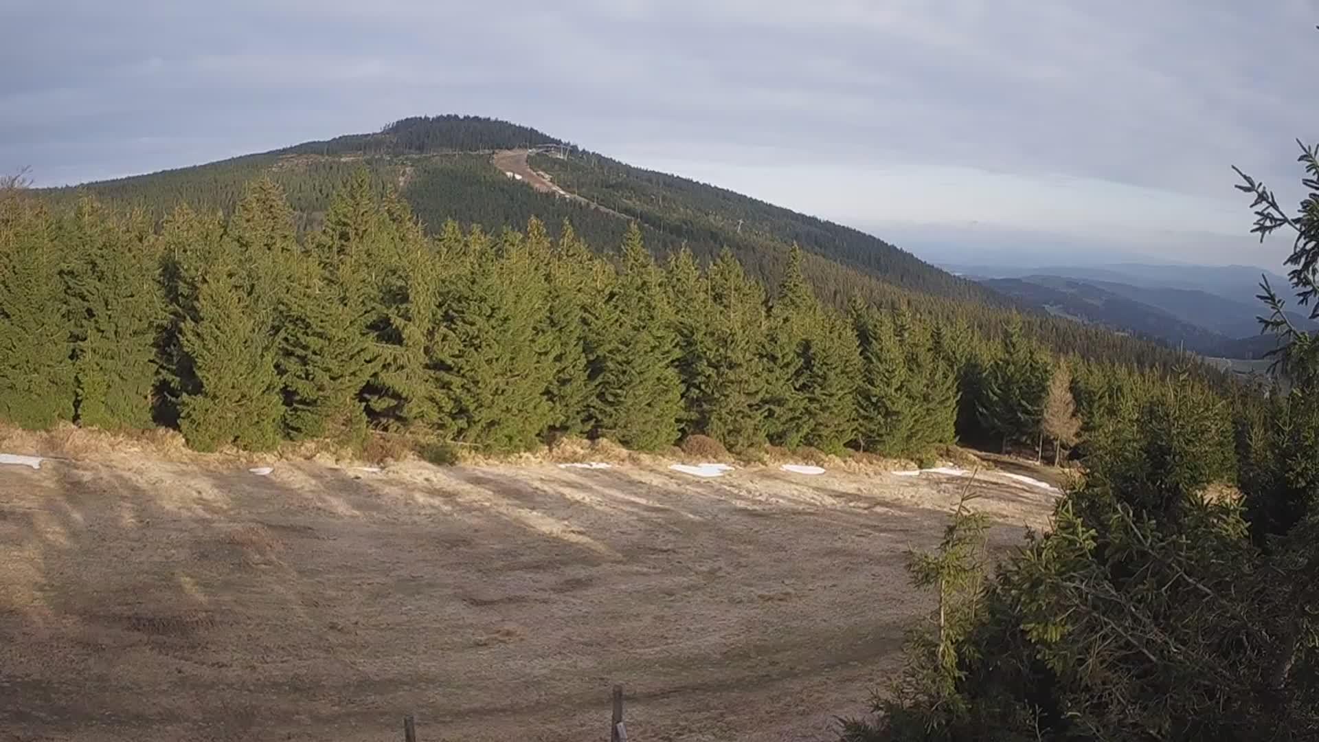 Webcam Ski Resort Czarna Gora cam 7 - Snieznik Mountains