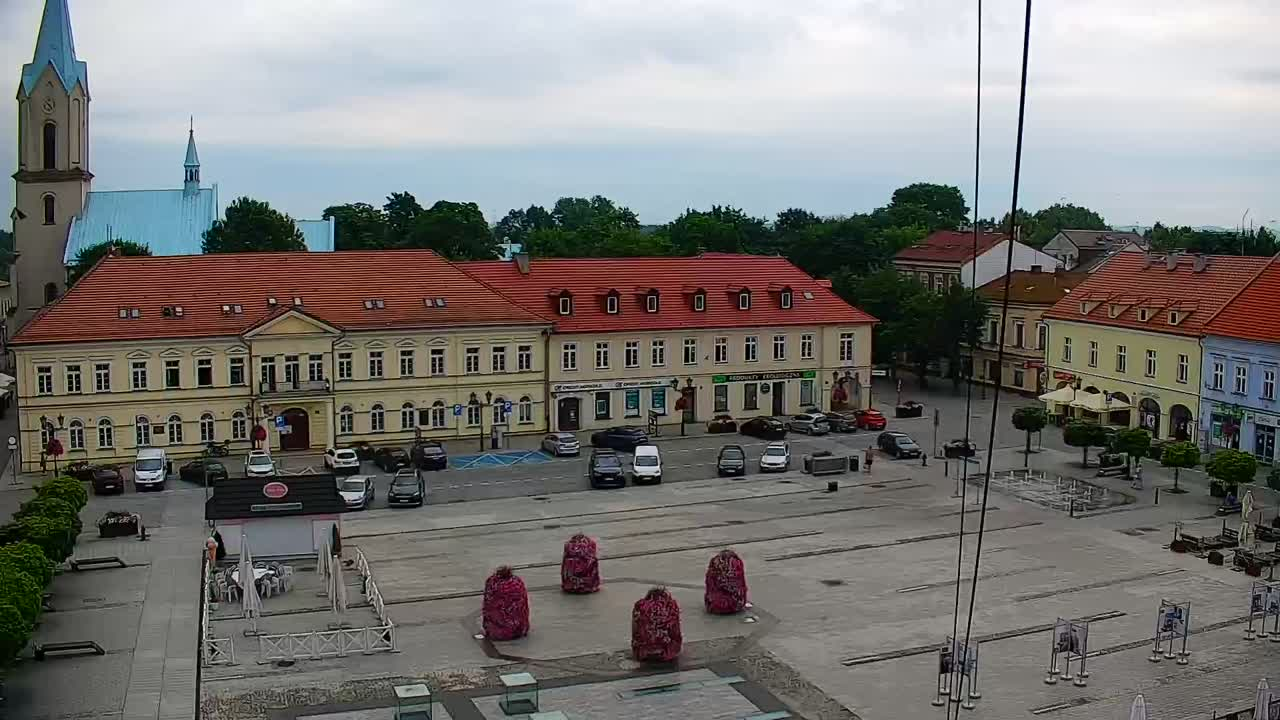 Grapa Litwinka