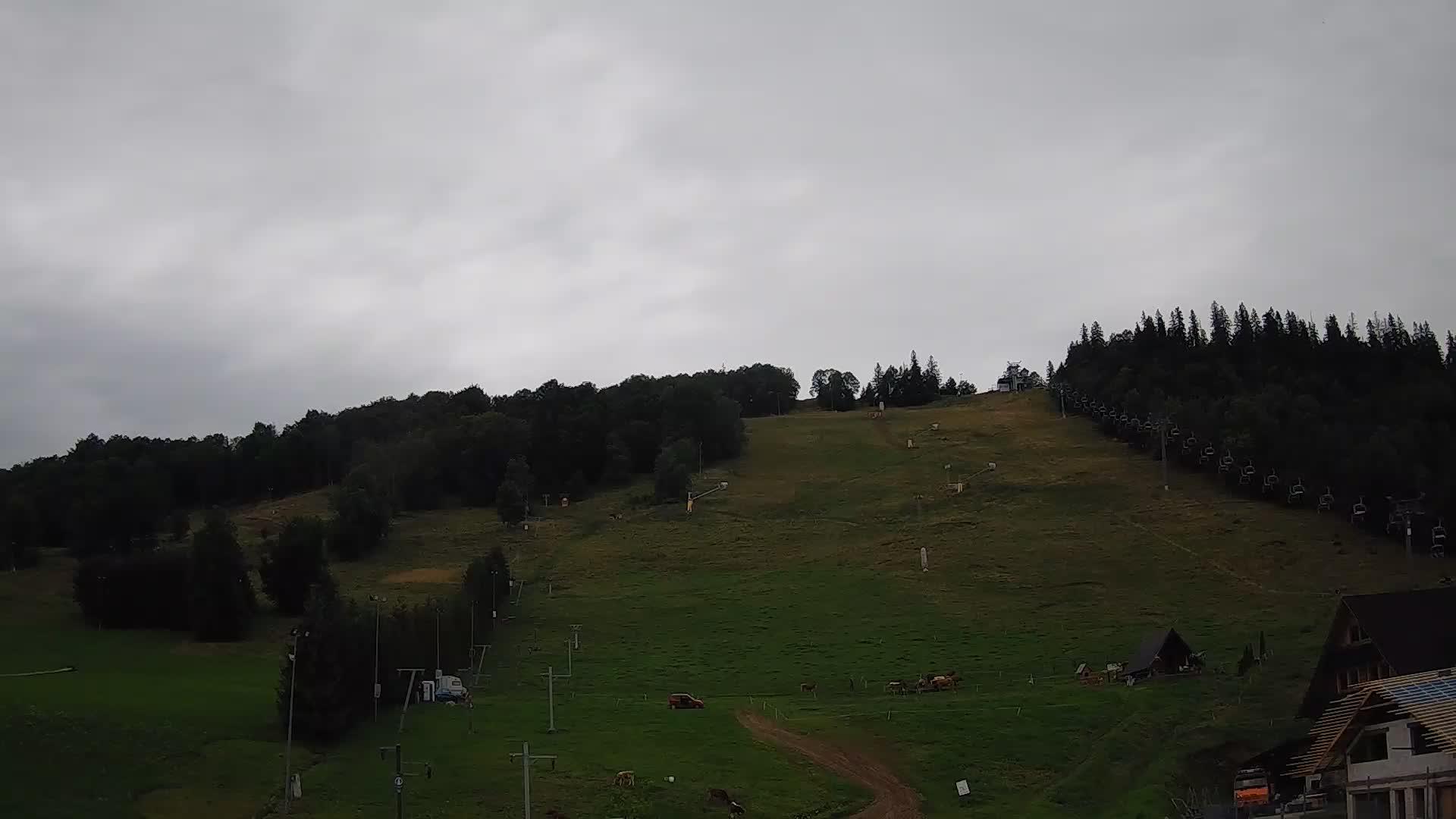Webcam Skigebiet Zakopane Harenda - Hohe Tatra