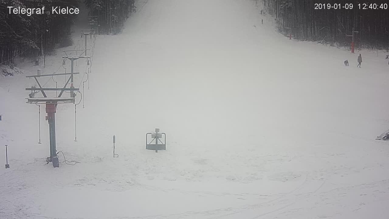 Stok narciarski Telegraf